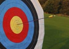 Archery target with arrow in bullseye